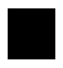 NIKFILM